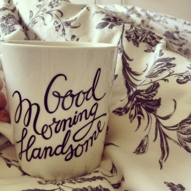 rose city style guide blog, canadian blogger, ontario blogger, fashion blog, lifestyle blog, style blog, good morning handsome, chapters indigo mug