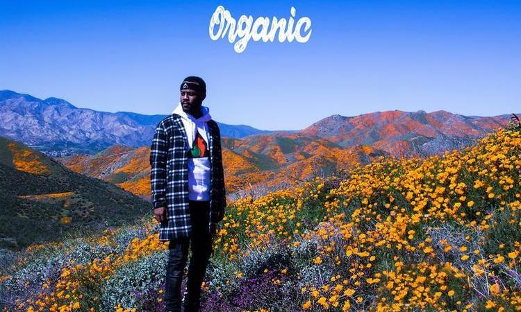 "Casey Veggies – ""Organic"""