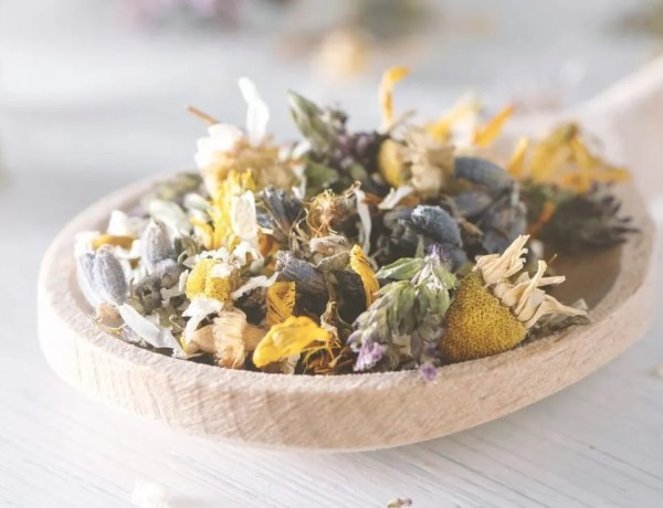 the gift of knowledge- Mix of dried herbs and blooms on a wooden spoon.