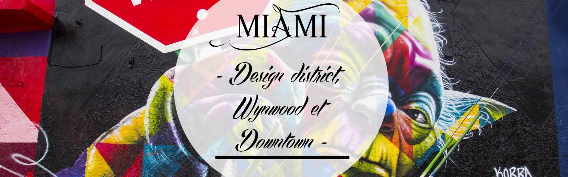 Design district, Wynwood et Downtown