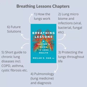 a copy of breathing lessons with six arrows pointing away from it each with a one sentence summary of that chapter
