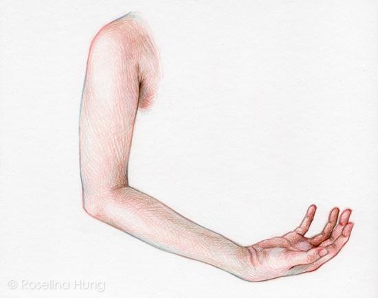 Roselina Hung - Cradling (sketch) - 2015