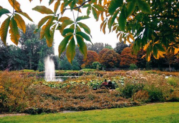 Beatrixpark in Amsterdam