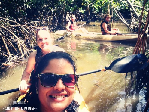 Kayaking around the Mangrove, Punta Izopo, Tela 2014