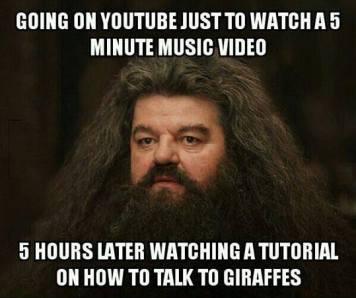 youtube-meme