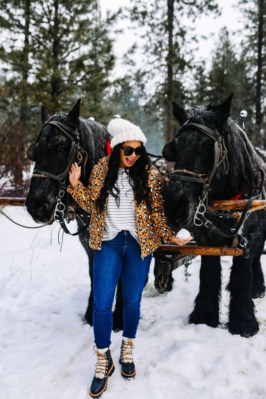 sleigh-ride-leavenworth-washington