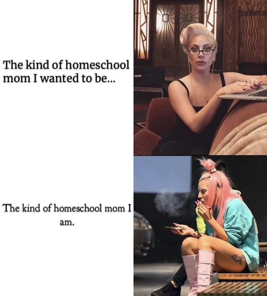 homeschool-meme