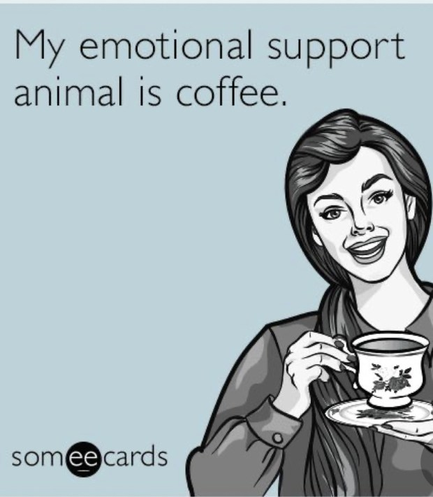 coffee-meme-that-will-make-you-laugh