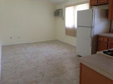Large and bright living room with new ceramic tile flooring