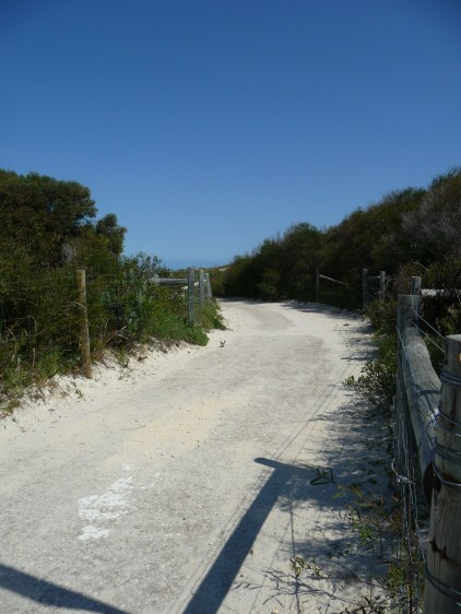 The path that leads down to Hillarys Dog Beach