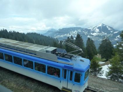 Train descending from Rigi Kulm in the direction of Arth Goldau