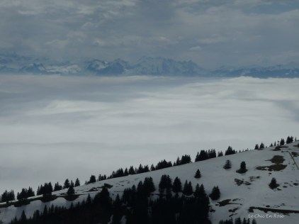 Looking towards the peaks of the Alps