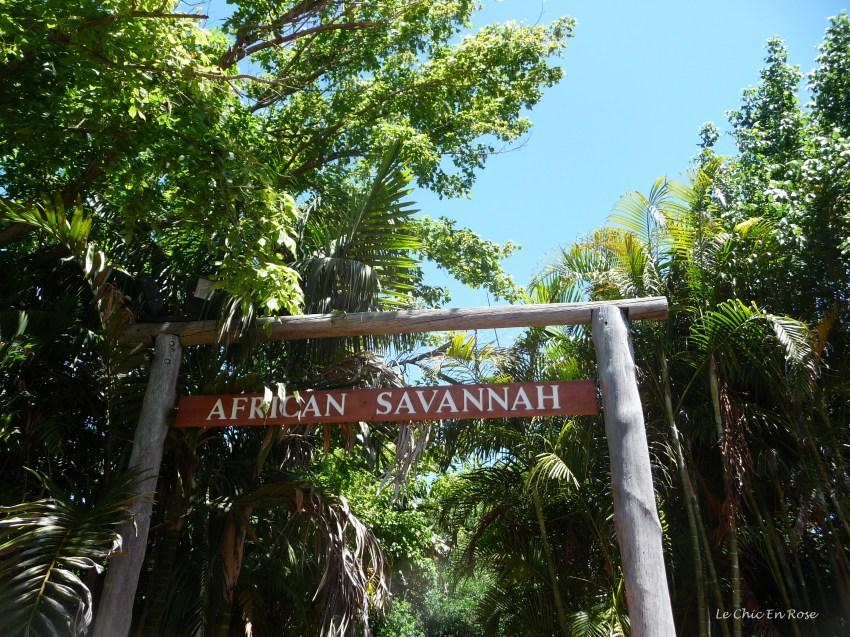 African Savannah Perth Zoo