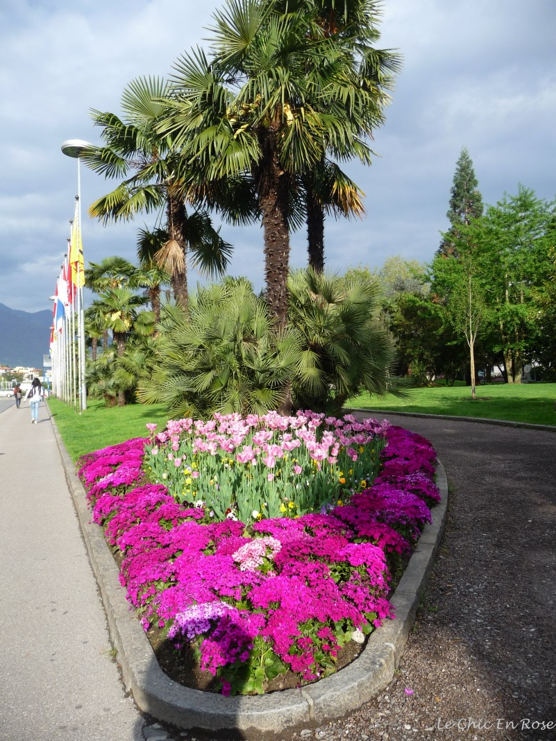 Floral display in the centre of Locarno