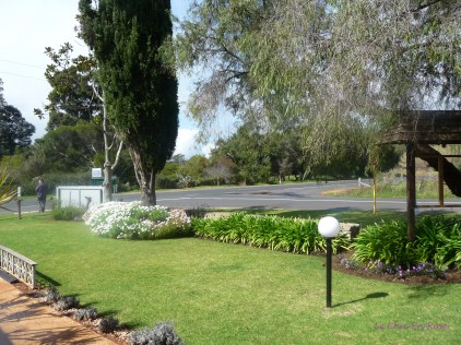 Grounds of Cape Lavender