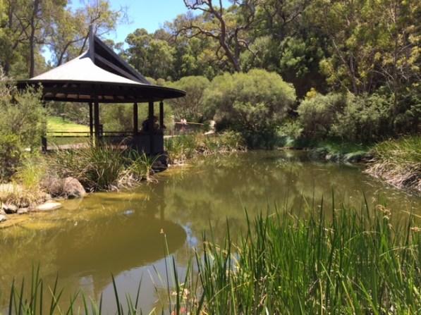 Water Gardens Kings Park