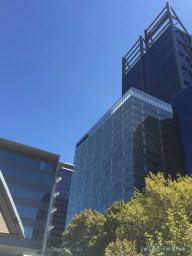 Office buildings overlooking Elizabeth Quay
