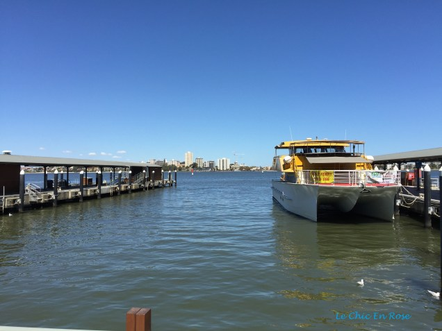 Boats down at Barrack Street Jetty