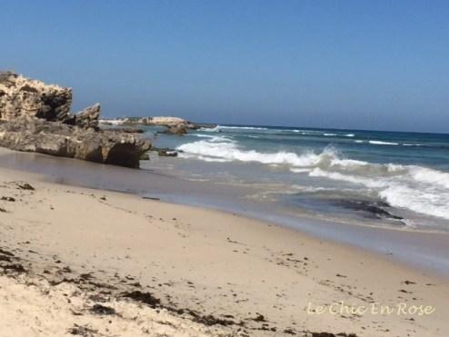 North Beach - our Saturday walking spot