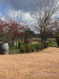 Carilley Estate Swan Valley WA