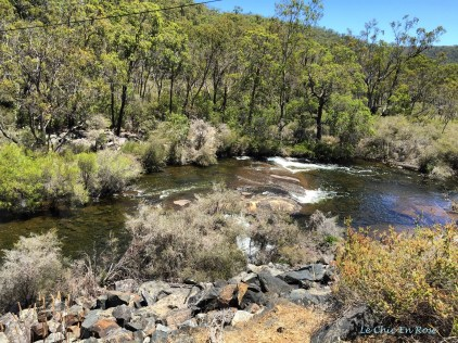 Collie River Near Wellington Dam