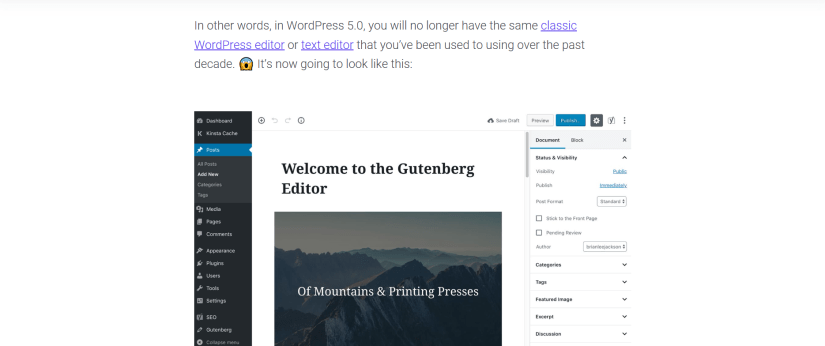 Kinsta-WordPress-Gutenberg-Article