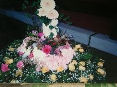 20110913-110025.jpg