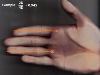 Vídeo | Dos dedos de la mano derecha delatan el tamaño del pene