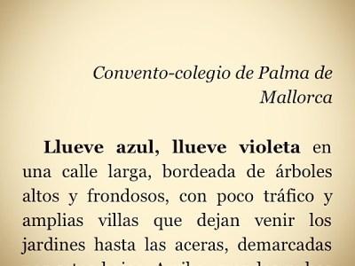 ¿Crees en las hadas adultas? Busca #sébuena en Amazon!!