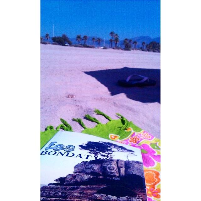 fes bondat de roser amills a la platja lectora envia foto