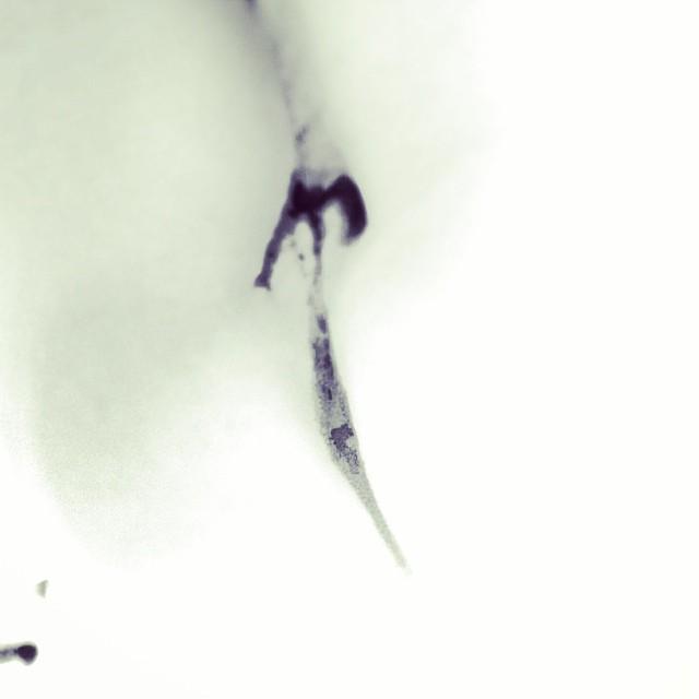 Flecha en el mármol ;))
