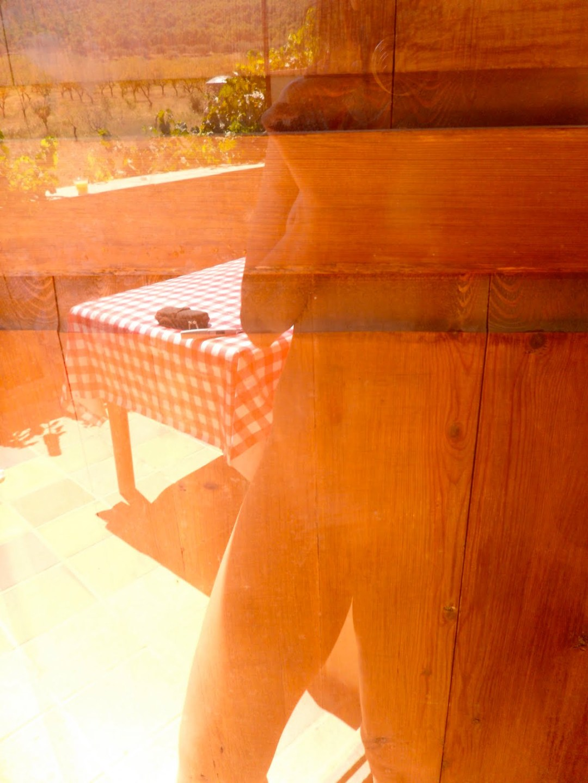 roser amills desnuda reflejo cristal horta de sant joan