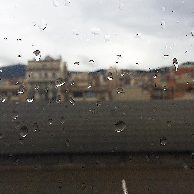 Aquesta pluja que ho banya tot treu de ses coses s'olor del món. Aquesta pluja no té un hivern, només té un dia un poc xerec...