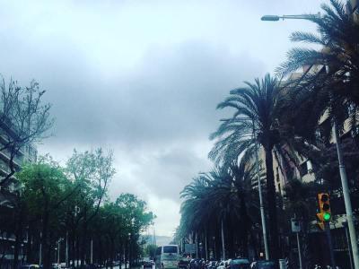 Tal día como hoy, hace dos años, también llovía ;)) No desesperemos: mi novela El ecuador de Ulises te espera en todas las librerías para llenar tu vida de Errol Flynn en Mallorca! @ifbeditors