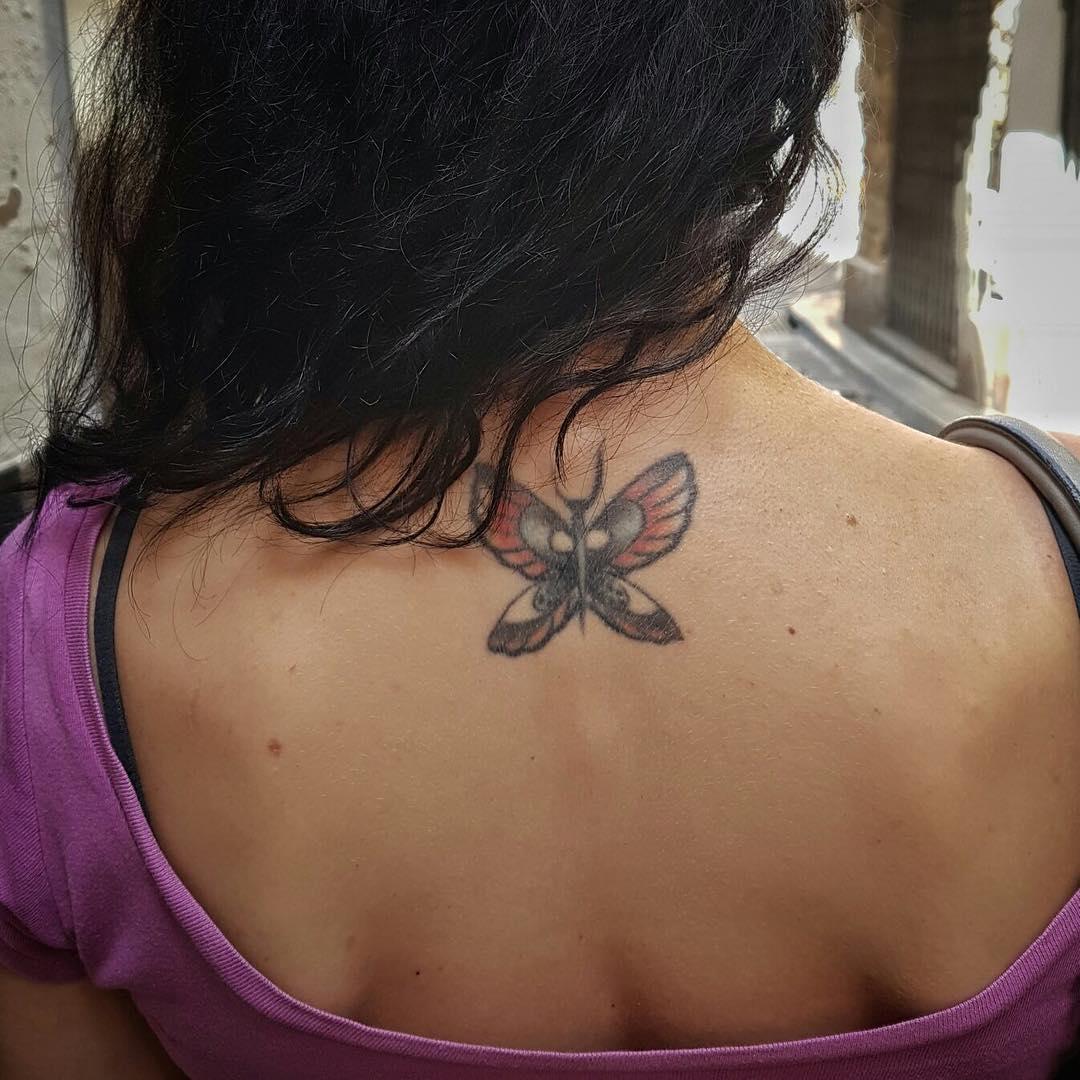 Mi mariposa perenne ;))Foto de @raimonmoreno