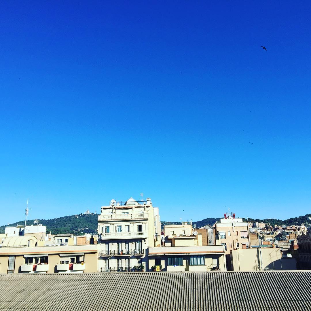 Bon dia! #amillsmorning #bondia #buenosdias #goodmorning