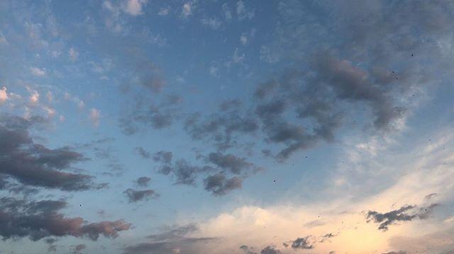 El jueves empieza muy bien, el cielo y las golondrinas lo celebran ;)) #gaujazz David Gau