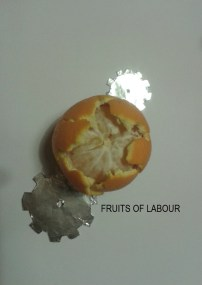 fruits-of-labour