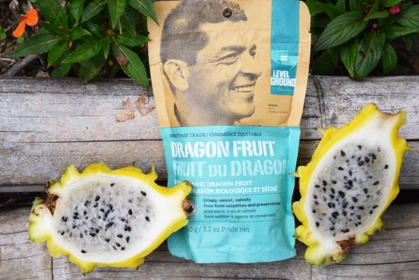 Level Ground dragon fruit (dried, fair trade, organic) - Rosette Fair Trade online store