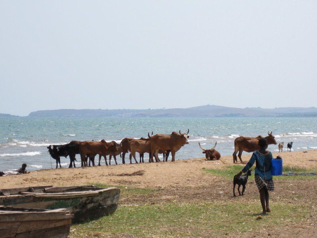 Lago Tanganika, Ujiji,Tanzania