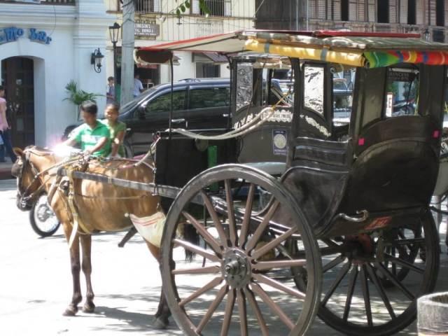 Coche de caballos en Vigán