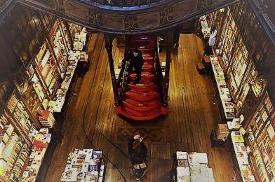 Libreria Lello, Oporto, una de las librerias más bellas del mundo
