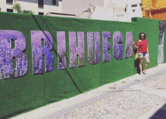 Brihuega,festival de la lavanda.