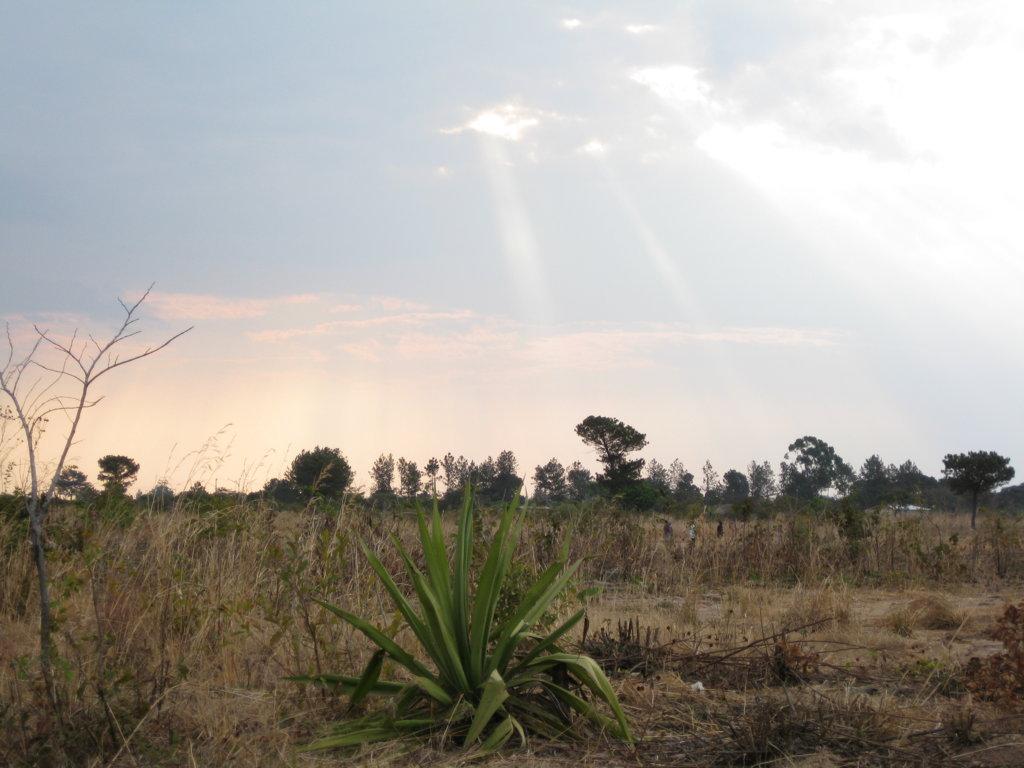 Kasama, Zambia