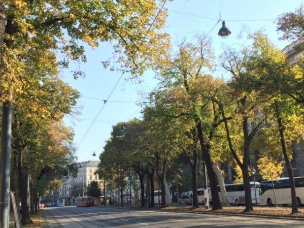 Viaje a Viena