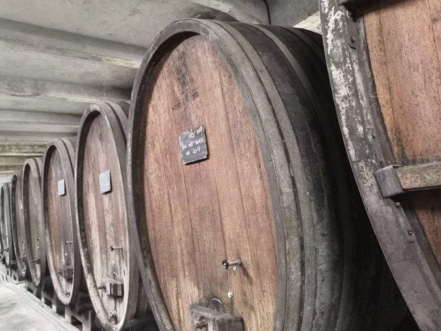 Visitando bodegas en la Alsacia