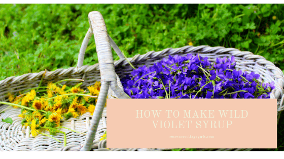 Homemade Wild Violet Syrup
