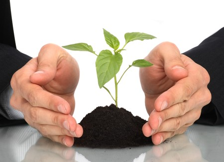 how to make your small business green