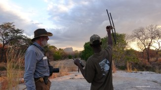 Vincent and Niassa scout search for a lion's signal. Photo: Rosey Perkins