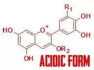 anthocyanin-acidic